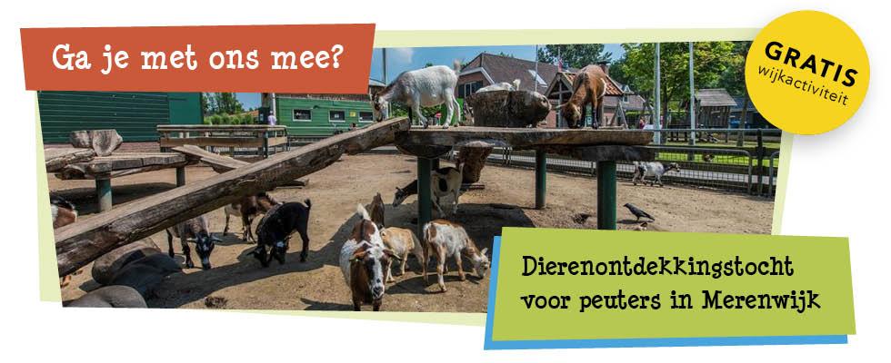 dierenontdekkingstocht voor peuters in merenwijk - spl